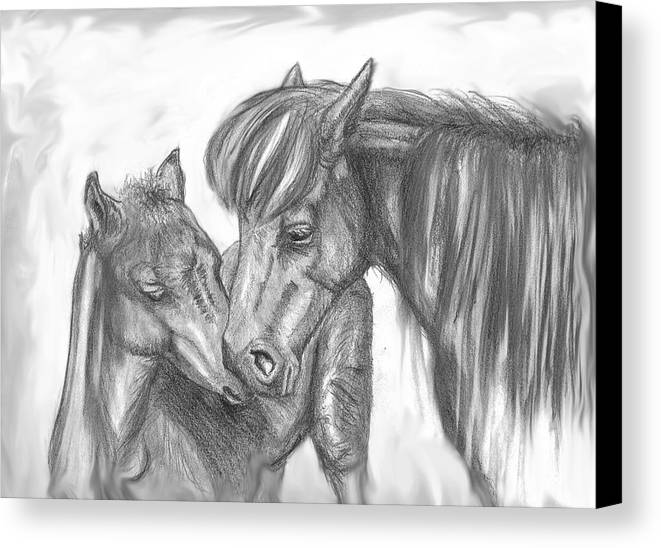 Mother Canvas Print featuring the drawing Mother And Foal by Crystal Suppes