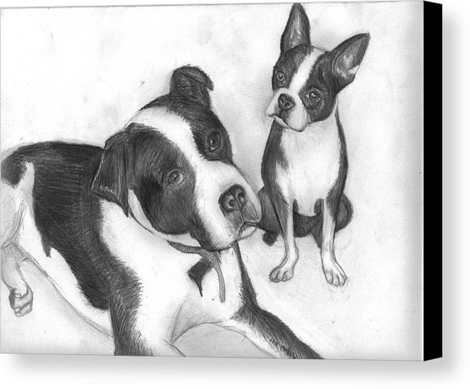 Dog Canvas Print featuring the drawing Ms Proutys Dogs by Katie Alfonsi