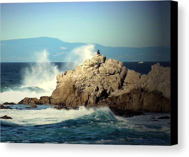 Clear-sunny-bright Canvas Print featuring the photograph On A Clear Day Cropped by Joyce Dickens