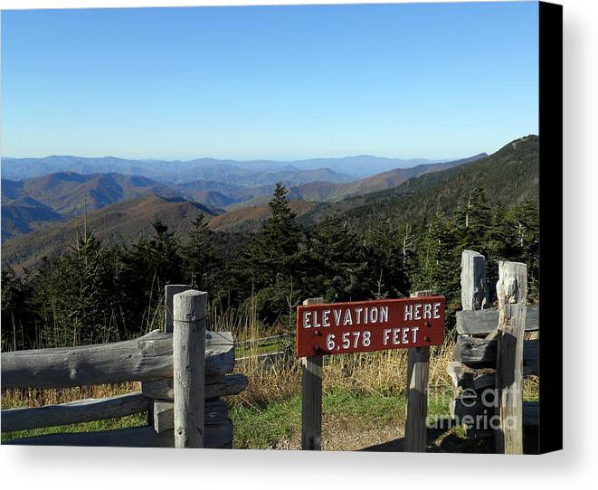 Scenic Tours Canvas Print featuring the photograph On The Way by Skip Willits