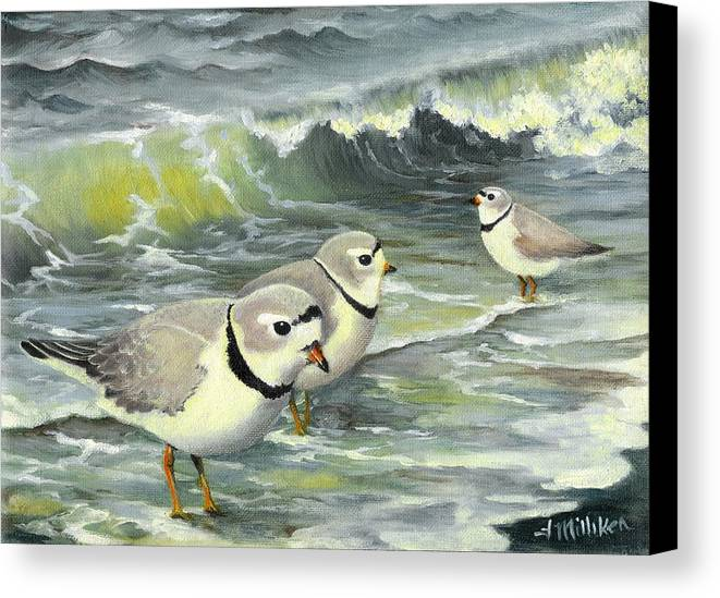 Piping Plovers Canvas Print featuring the painting Piping Plovers At The Shore by Tara Milliken
