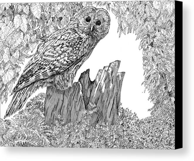 Birds Canvas Print featuring the mixed media Russian Owl by Leonie Bell