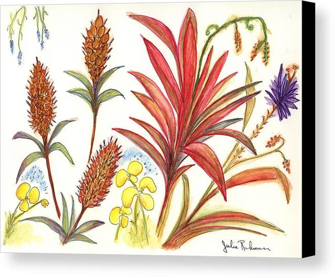 Red Flowers Canvas Print featuring the painting Spiky Florida Flowers by Julie Richman