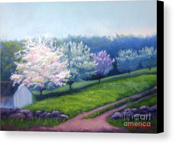 Apple Blossoms Canvas Print featuring the painting Spring In New England by Laura Roberts