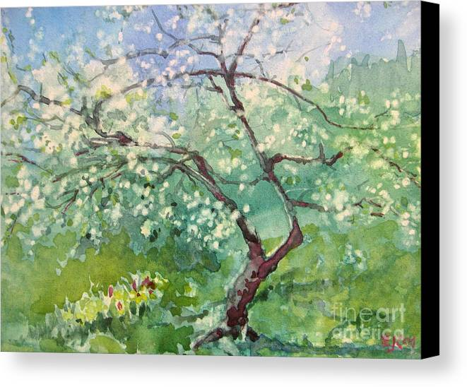 Plum Tree Canvas Print featuring the painting Spring Plum by Elizabeth Carr