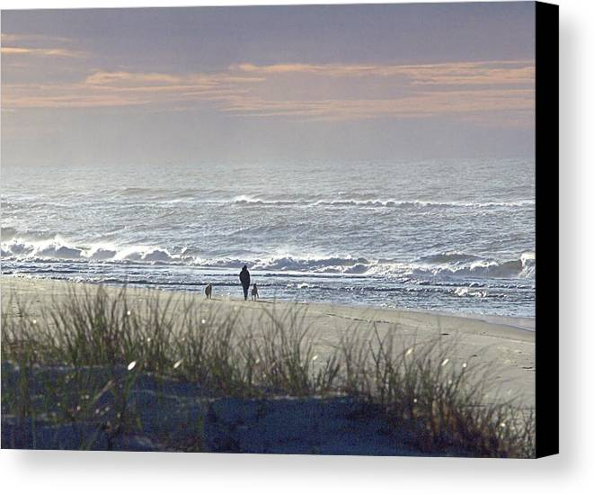 Seas Canvas Print featuring the photograph Stroll I I by Newwwman