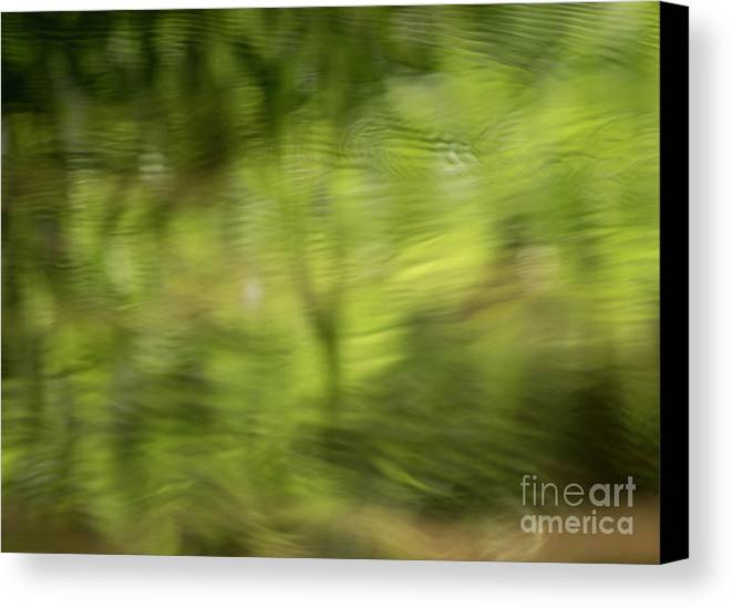 Pond Canvas Print featuring the photograph Water Drops On Reflected Pond by Michelle Himes