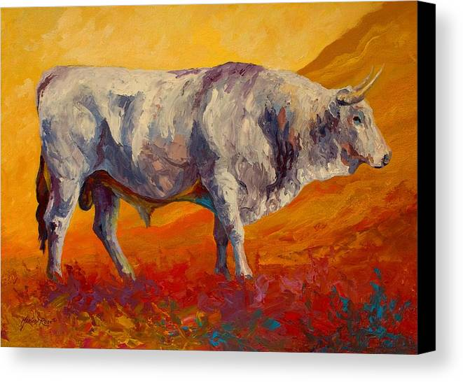 Cows Canvas Print featuring the painting White Bull by Marion Rose