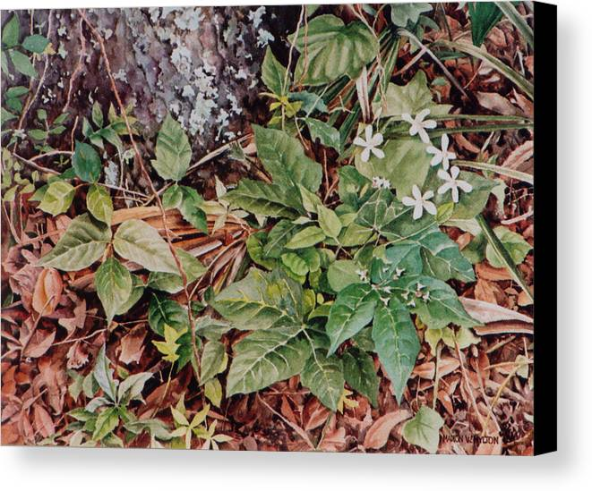 Flowers Canvas Print featuring the painting Woodland Blossoms by Marion Hylton