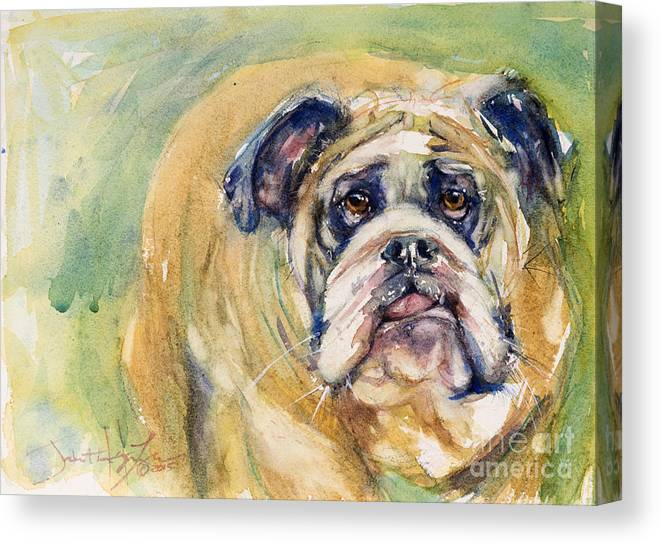 Dog Canvas Print featuring the painting Bulldog by Judith Levins