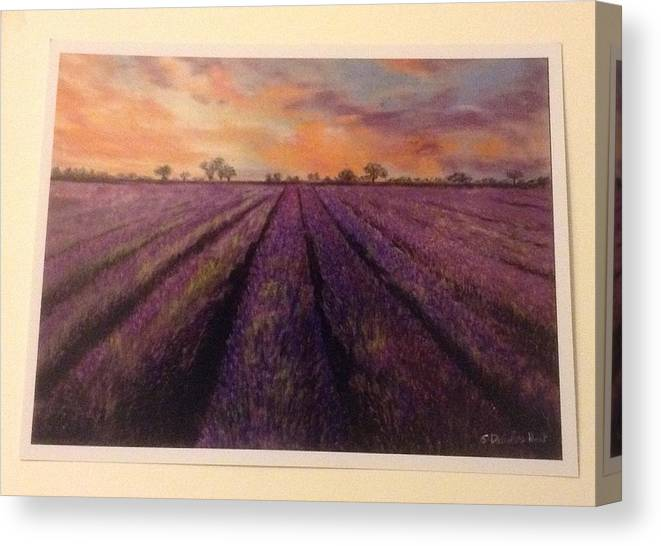 Lavender Canvas Print featuring the pastel Lavender Field by Sharon Davies Hunt