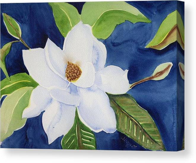Magnolia Canvas Print featuring the painting Magnolia by Janet Doggett