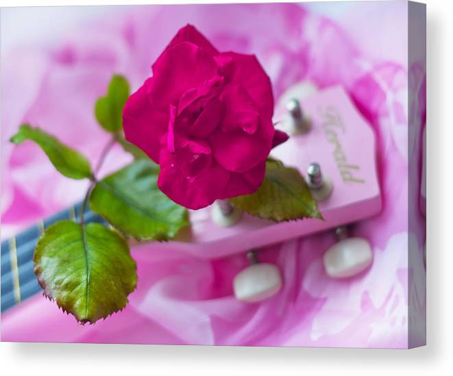 Red Canvas Print featuring the photograph Pink Rose 5 by Alex Art and Photo