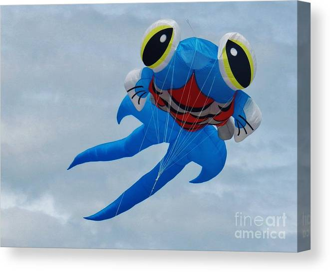 Blue Fish Canvas Print featuring the photograph Blue Fish Kite by Snapshot Studio