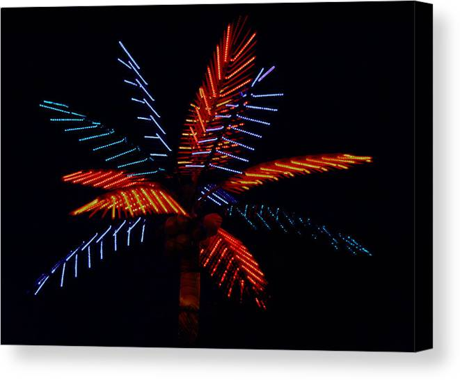Neon Canvas Print featuring the photograph Ellas Neon Palm by David Houston