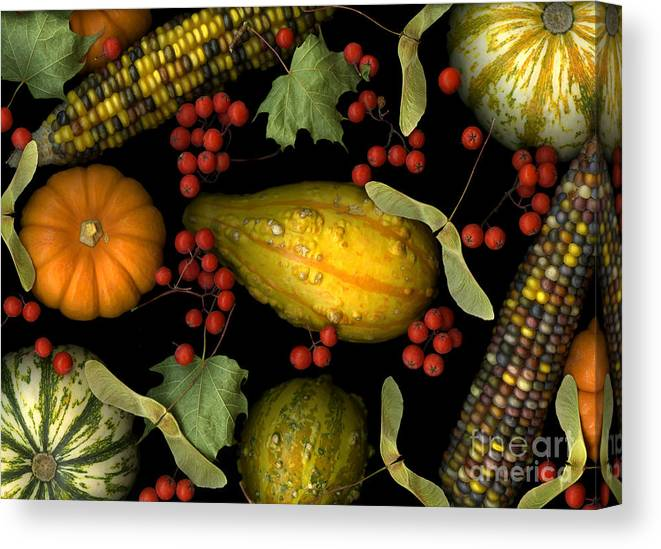 Slanec Canvas Print featuring the photograph Fall Harvest by Christian Slanec
