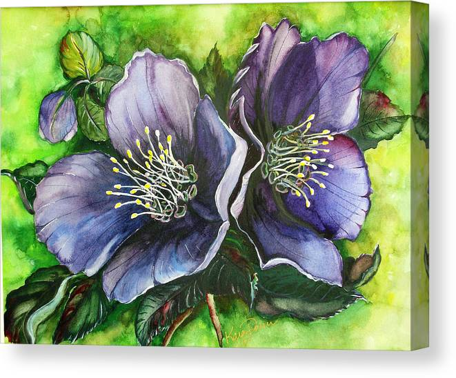 Flower Painting Botanical Painting Original W/c Painting Helleborous Painting Canvas Print featuring the painting Helleborous Blue Lady by Karin Dawn Kelshall- Best