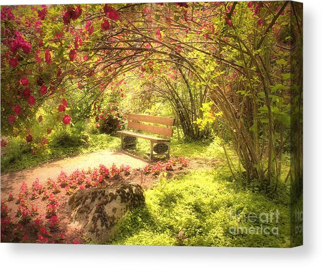 Bench Canvas Print featuring the photograph June 20 2010 by Tara Turner