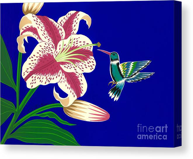 Nature Canvas Print featuring the drawing Lily And Hummingbird by Lucyna A M Green