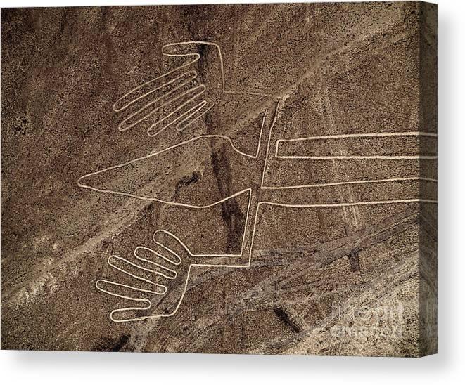 Peru Canvas Print featuring the photograph Lizard Geoglyph,nazca, Peru by Karol Kozlowski