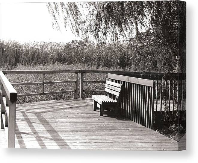Park Canvas Print featuring the photograph Look Out Point by Eric Belford