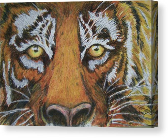Wildlife Canvas Print featuring the painting Tiger Eyes by Patricia R Moore