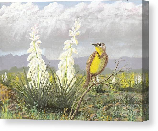 Meadowlark Canvas Print featuring the painting Western Meadowlark by Don Lindemann