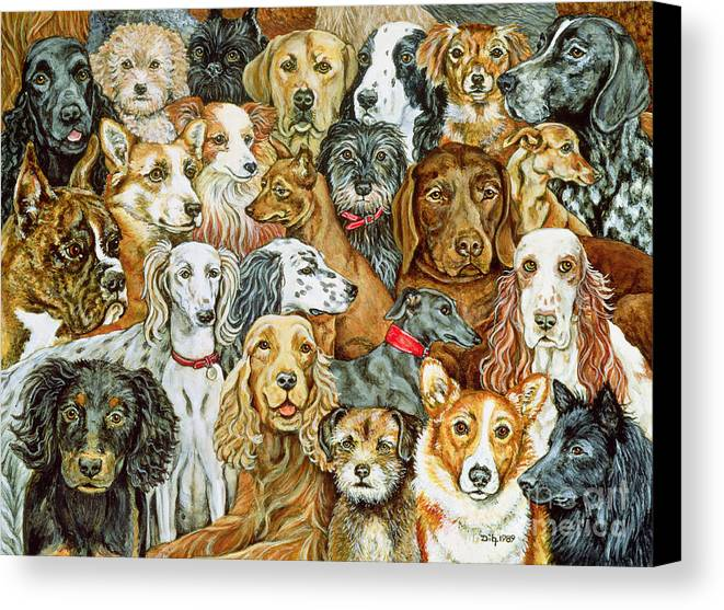 Dog Spread Canvas Print featuring the painting Dog Spread by Ditz