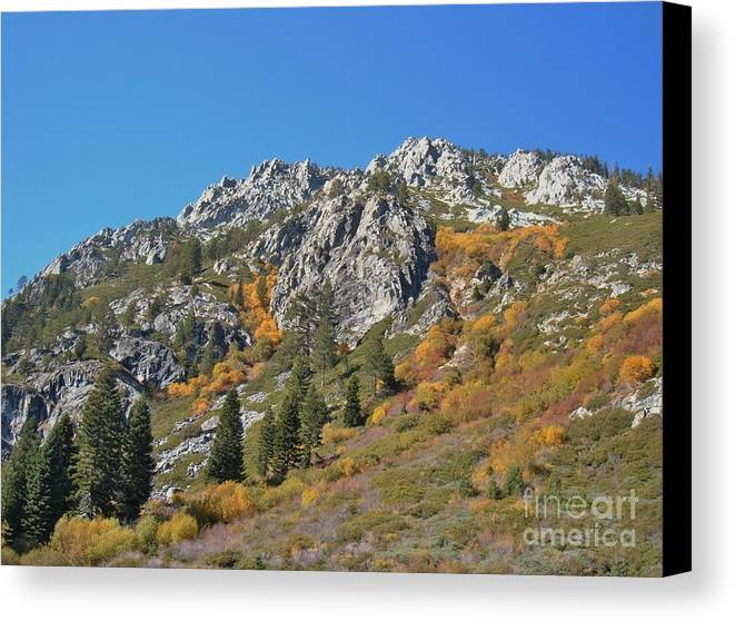 Fall Canvas Print featuring the photograph Fall Colors S Lake Tahoe California by Julie Doerges