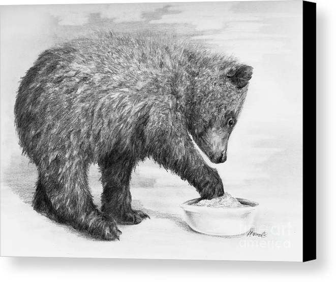 Bear Canvas Print featuring the drawing Just Right by Meagan Visser