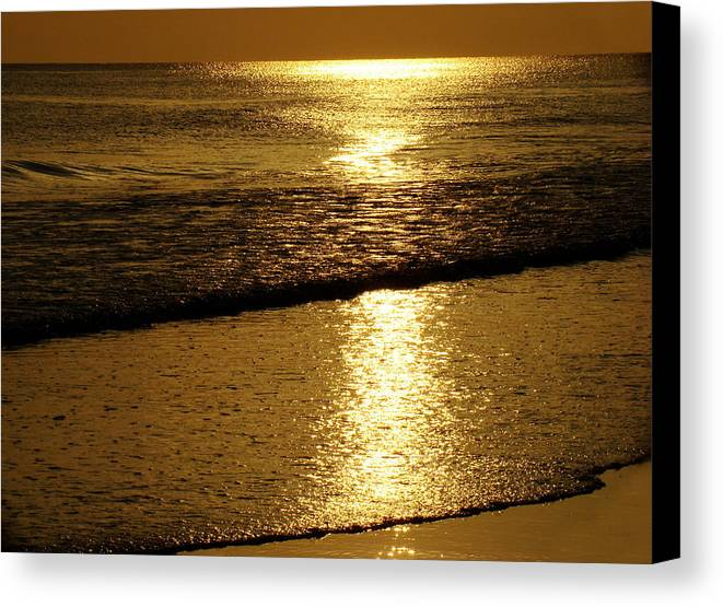 Panama City Beach Canvas Print featuring the photograph Liquid Gold by Sandy Keeton