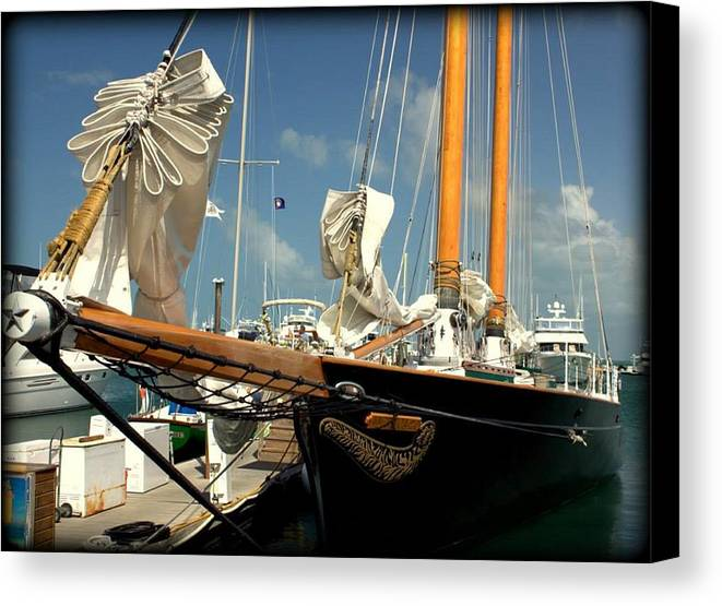 Sail Canvas Print featuring the photograph Point To The Stars by Daniel Jakus
