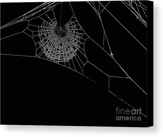 Background Canvas Print featuring the photograph Spider's Web by Sinisa Botas