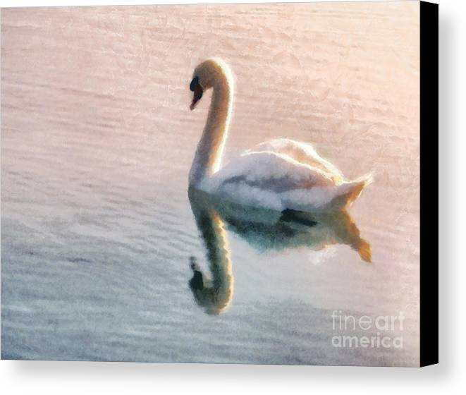 Swan Canvas Print featuring the painting Swan On Lake by Pixel Chimp