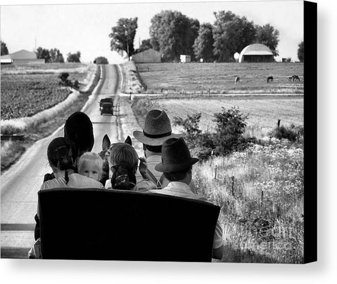Amish Canvas Print featuring the photograph Amish Family Outing by Julie Dant