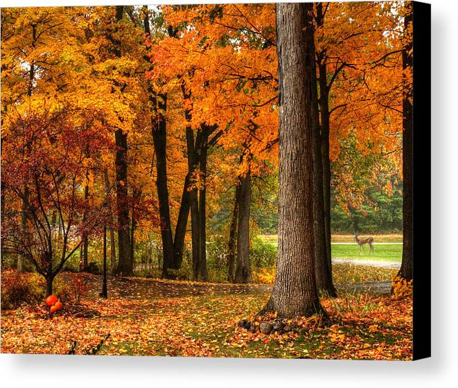 Fall Canvas Print featuring the photograph Fall At Home by Coby Cooper
