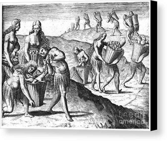1591 Canvas Print featuring the photograph Florida: Storing Food, 1591 by Granger