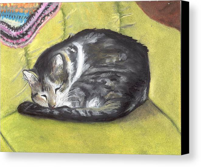 Oil Pastel Canvas Print featuring the painting Comfortable Cat by Pamela Wilson