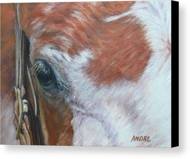Horse Horses Paint Rid White Wild Outside Portrait Animals Animal Canvas Print featuring the painting Eye Paint by Ruth Andre