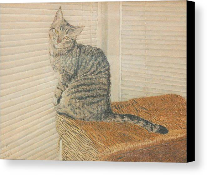 Tabby Cat Canvas Print featuring the painting Goldberry by Miriam A Kilmer