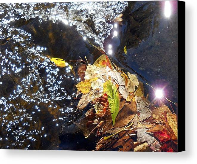 Leaves Canvas Print featuring the photograph Leaves In River by Wolfgang Schweizer