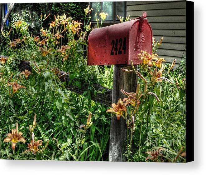Mailbox Canvas Print featuring the photograph Mailbox by Chris Fleming