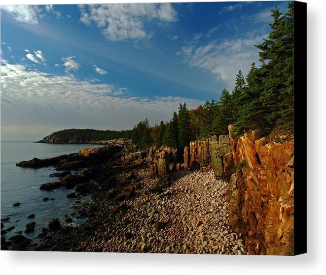 Acadia National Park Canvas Print featuring the photograph Maine Rocky Coast by Juergen Roth