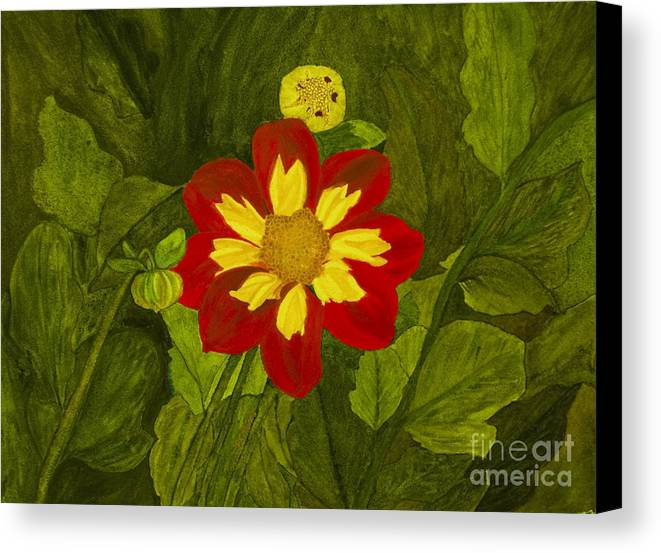 Red Canvas Print featuring the painting Red Dahlia by Louise Magno