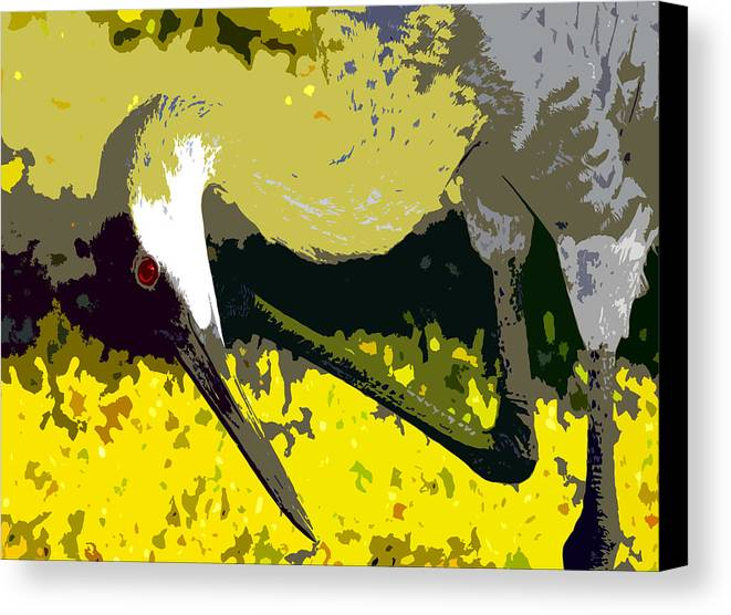 Sand Hill Crane Canvas Print featuring the painting Sandhill Scratching by David Lee Thompson