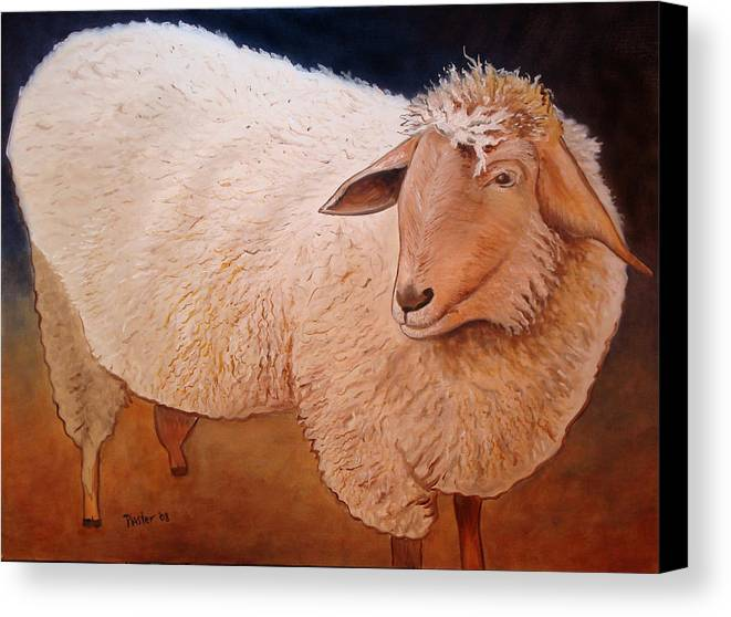 Animal Canvas Print featuring the painting Shaggy Sheep by Scott Plaster