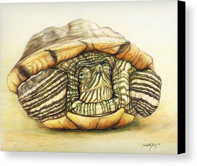 Turtle Canvas Print featuring the painting Slow Retreat by Charlotte Yealey