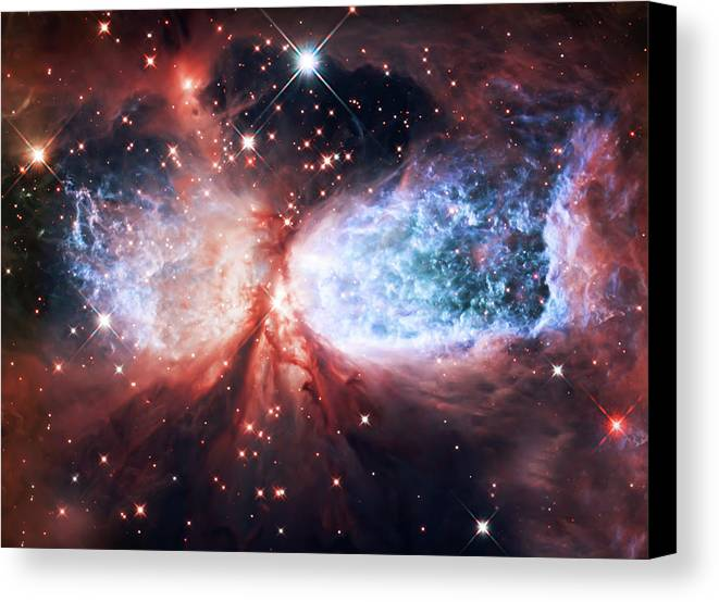 Space Canvas Print featuring the photograph Star Gazer by Jennifer Rondinelli Reilly - Fine Art Photography