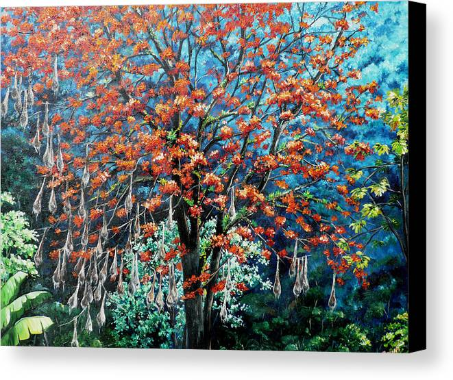 Tree Painting Mountain Painting Floral Painting Caribbean Painting Original Painting Of Immortelle Tree Painting  With Nesting Corn Oropendula Birds Painting In Northern Mountains Of Trinidad And Tobago Painting Canvas Print featuring the painting The Mighty Immortelle by Karin Dawn Kelshall- Best
