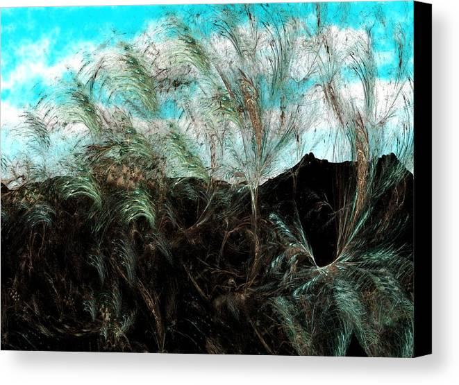 Digital Photograph Canvas Print featuring the digital art Untitled 9-26-09 by David Lane